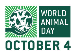 World Animal Day, October 4th