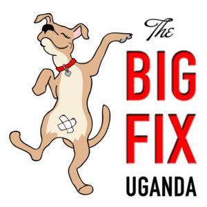 World Animal Day 2017 / Uganda @ Uganda | 0