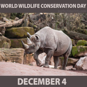 Image result for World Wildlife Conservation Day images