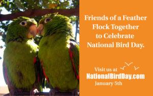 #National Bird Day